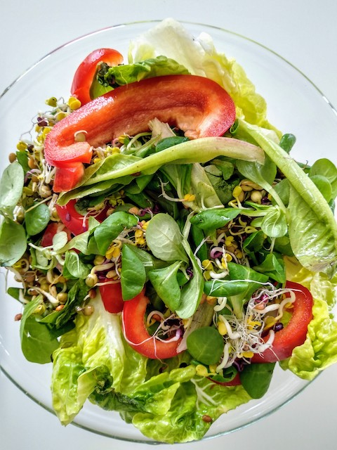 Vegetables, Wellness, Prevention, Healthy food choices, Healthy, Healthy lifestyle, antioxidants, Diet, Plant-based, Wholesome, Wholefood, Patience, therapy,